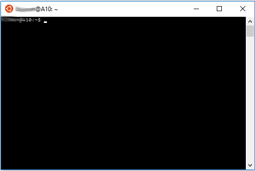 bash en windows 10